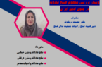 وبینار «بررسی مفهوم صلح عادلانه در متون ادبی ایران» برگزار شد